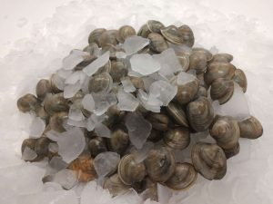 100 Claims for sale by Mobjack Bay Seafood located in Gloucester Virginia