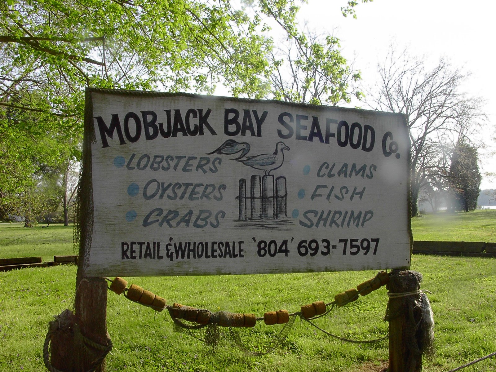 Mobjack Bay Seafood located in Gloucester Virginia is a wholesale seafood distributor